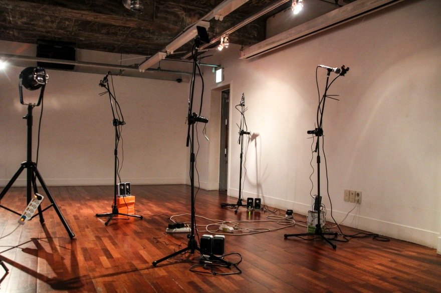 Untitled, sound performance, 2014 (2)